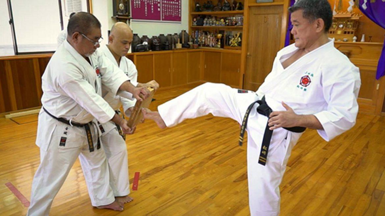 1st Online EU Inclusive Karate Championship